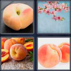 4-pics-1-word-5-letters-peach