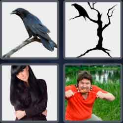 4-pics-1-word-5-letters-raven