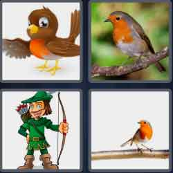 4-pics-1-word-5-letters-robin