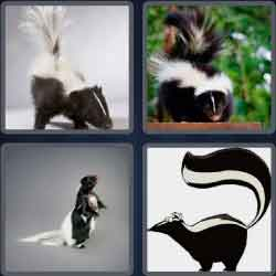 4-pics-1-word-5-letters-skunk