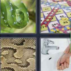 4 Pics 1 Word 5 Letters Snake