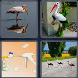4-pics-1-word-5-letters-stork