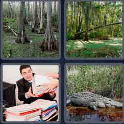 4-pics-1-word-5-letters-swamp