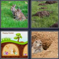 4-pics-1-word-6-letters-burrow