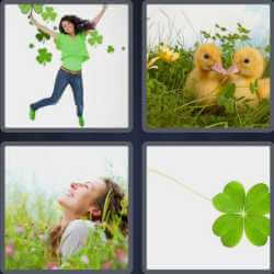4-pics-1-word-6-letters-clover