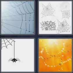 4-pics-1-word-6-letters-cobweb