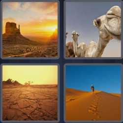 4-pics-1-word-6-letters-desert