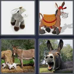 4-pics-1-word-6-letters-donkey