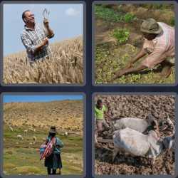 4-pics-1-word-6-letters-farmer