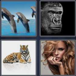 4-pics-1-word-6-letters-mammal