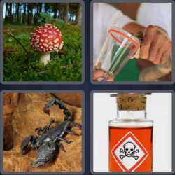 4-pics-1-word-6-letters-poison