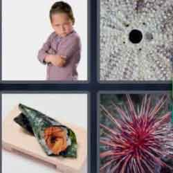 4 Pics 1 Word 6 Letters Urchin