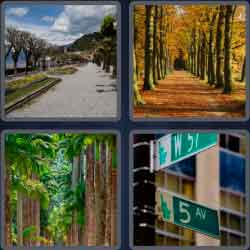 4-pics-1-word-6-letters-avenue