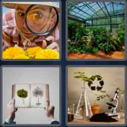 4-pics-1-word-6-letters-botany