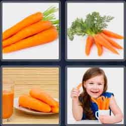 4-pics-1-word-6-letters-carrot
