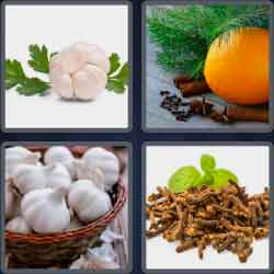 4-pics-1-word-6-letters-cloves