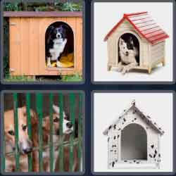 4 Pics 1 Word 6 Letters Kennel