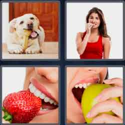 4 pics 1 word 6 letters dog biting a bone