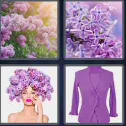 4-pics-1-word-6-letters-lilacs