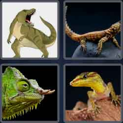 4-pics-1-word-6-letters-lizard