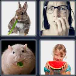 4 Pics 1 Word 6 Letters Nibble