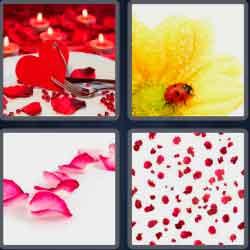 4-pics-1-word-6-letters-petals