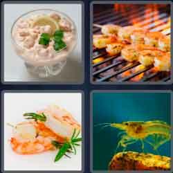 4 Pics 1 Word 6 Letters Shrimp