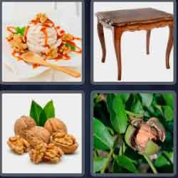 4 Pics 1 Word 6 Letters Walnut