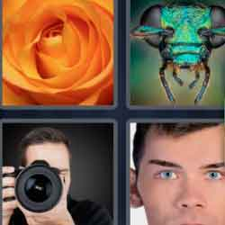 4 Pics 1 Word 7 Letters Closeup