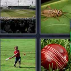 4 Pics 1 Word 7 Letters Cricket