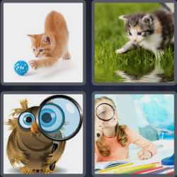 4-pics-1-word-7-letters-curious