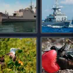 4 Pics 1 Word 7 Letters Frigate