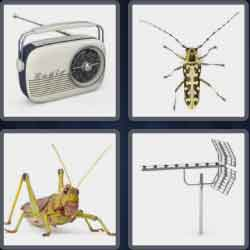 4-pics-1-word-7-letters-antenna
