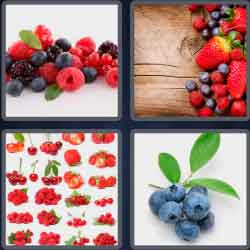 4-pics-1-word-7-letters-berries