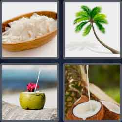 4-pics-1-word-7-letters-coconut