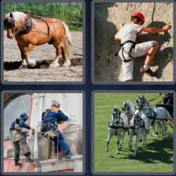 4-pics-1-word-7-letters-harness