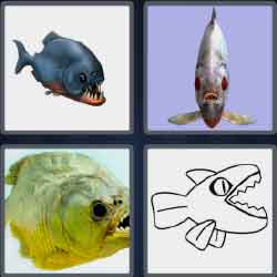4 pics 1 word 7 letters fishes