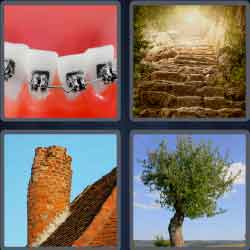 4 pics 1 word 7 letters twisted tree