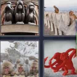4 Pics 1 Word 7 Letters Monkeys