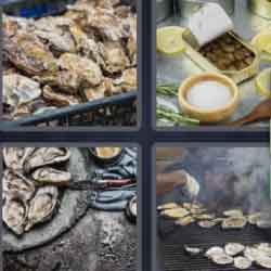 4 Pics 1 Word 7 Letters Oysters