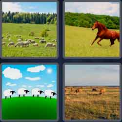 4-pics-1-word-7-letters-pasture