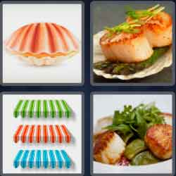 4-pics-1-word-7-letters-scallop