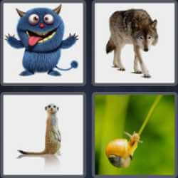 4-pics-1-word-8-letters-creature