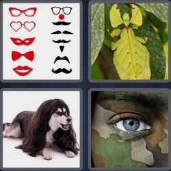 4-pics-1-word-8-letters-disguise