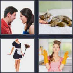 4-pics-1-word-8-letters-domestic