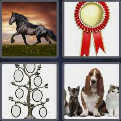 4-pics-1-word-8-letters-pedigree