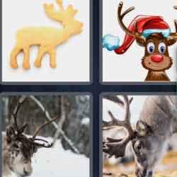 4 pics 1 word 8 letters Reindeer