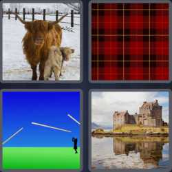4-pics-1-word-8-letters-scottish