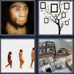 4 pics 1 word 8 letters ancestor