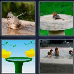 4 pics 1 word 8 letters birthbath